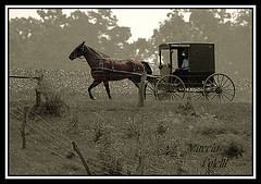 Vintage-carriage